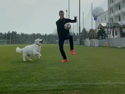 Виктор Цыганков показал совместную тренировку со своим псом